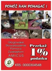 ulotka 1%_amicus