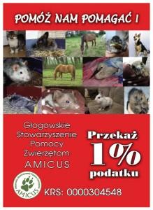 ulotka 1%_amicus